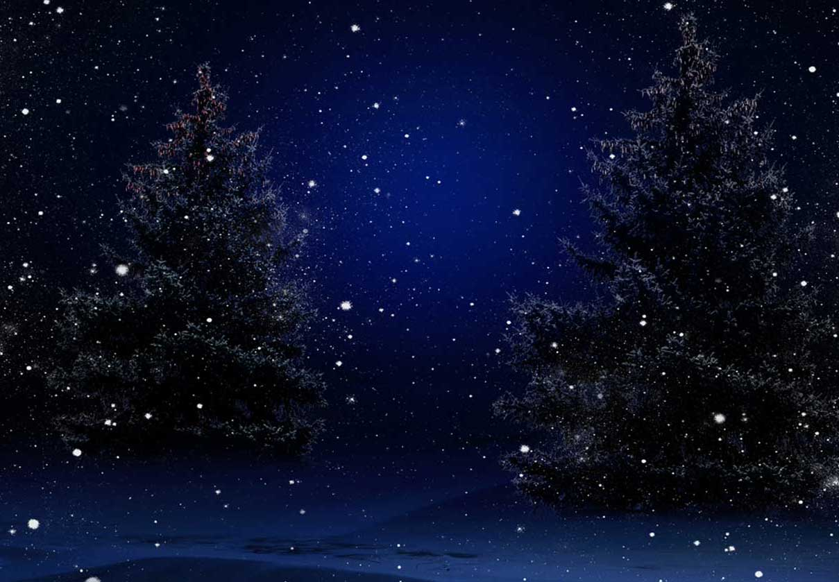 Christmas-trees-at-night-bg - Racks